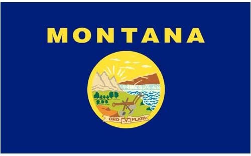 Quality Nylon Montana State Flag You Pick Brass Grommets All Sizes