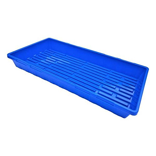 Blue Extra Strength Seedling Tray (No Drain Holes) - 20'' x 10'', 10 Pack, for Growing Microgreens, Wheatgrass Seeds, Hydroponic Germination, Fodder System 1020 Starter by Bootstrap Farmer by Bootstrap Farmer