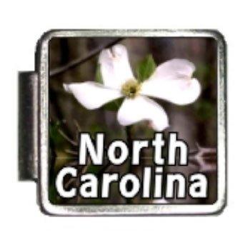 North Carolina State Flower American Dogwood Photo Italian Charm Bracelet Link