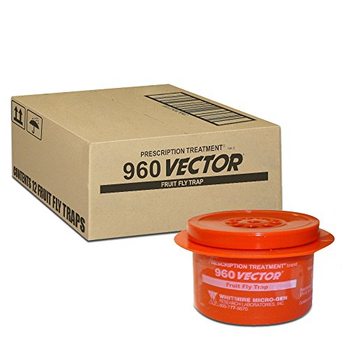 Vector 960 Fruit Fly Traps Box of -