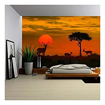 African Sunset with Silhouette Animals Wall Decor - Wall Murals