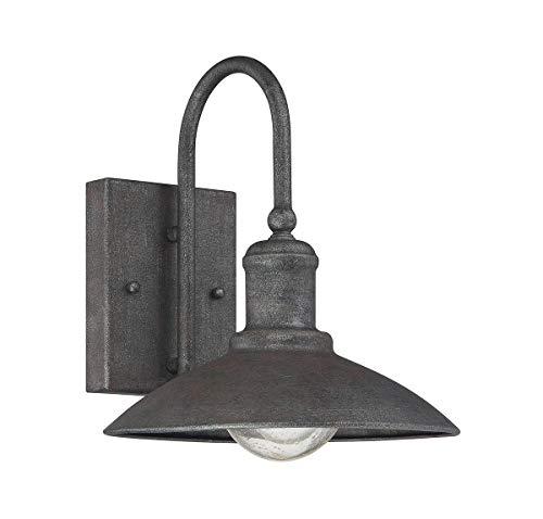 (Savoy House 5-5030-1-32, Mica Wall Lantern, Artisan Rust)