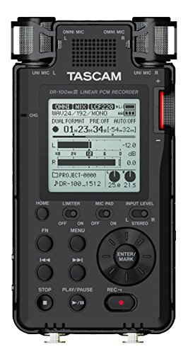 Tascam DR-100MKIII 192kHz/24-Bit Stereo Portable Recorder by Tascam