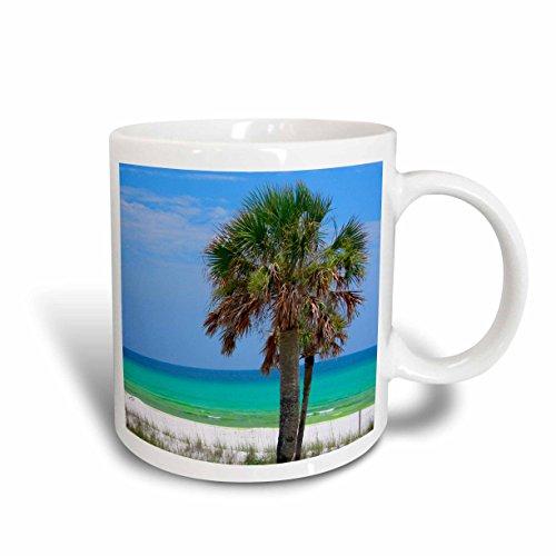3dRose mug_189478_1