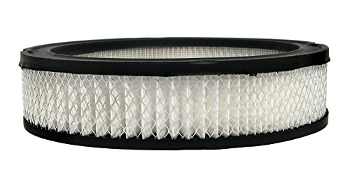 ACDelco A117C Professional Air Filter