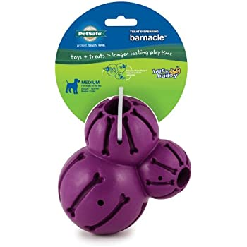 PetSafe Busy Buddy Barnacle Dog Toy, Medium