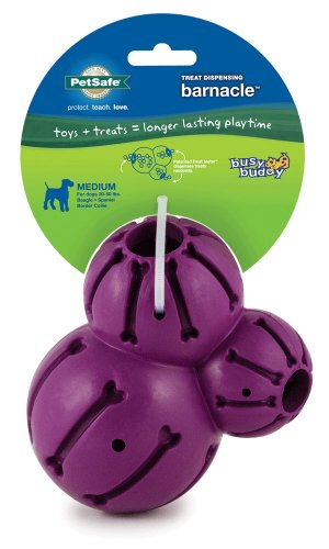 Petsafe Busy Buddy Barnacle, Medium, My Pet Supplies