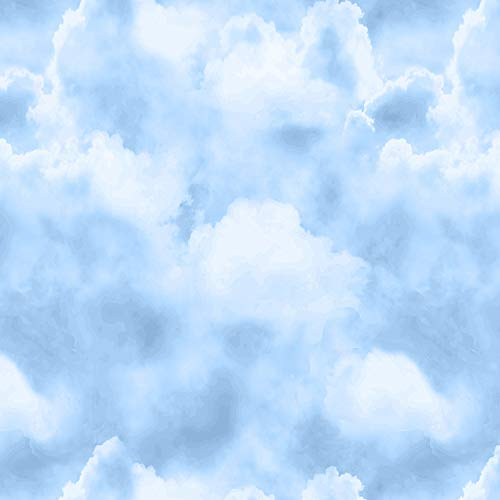 (Blank Quilting Prairie Lane Sky Light Blue Fabric Fabric by the Yard)