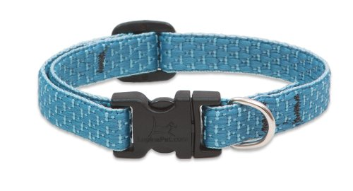 LupinePet Tropical Adjustable Collar Small