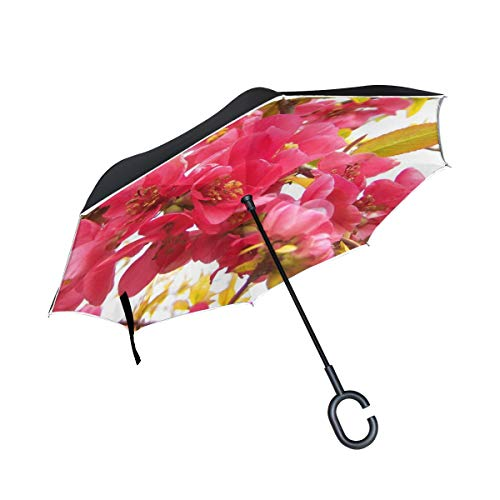 Double Layer Inverted Flowering Quince Japan Pink Spring Flowers Shrub Umbrellas Reverse Folding Umbrella Windproof Uv Protection Big Straight Umbrella For Car Rain Outdoor With C-shaped Handle