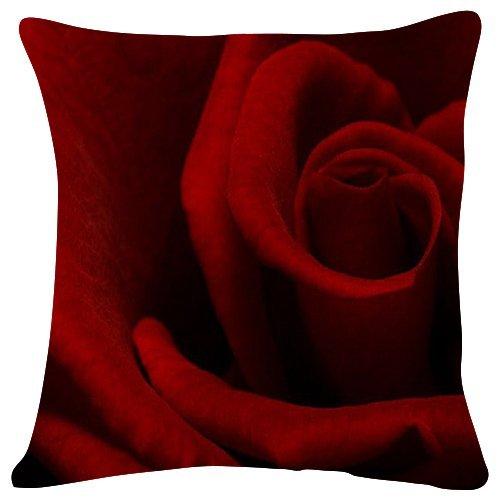 Amazon.com: HONGYUDE Girona - World- #40493 - Plush Cushion ...
