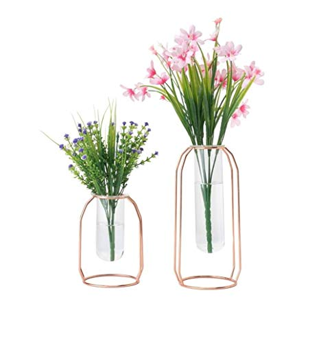 HYINDOOR Glass Vases Set of 2 Metal Flower Planter Terrariums Plant Glass Clear Decorations for Living Room, Rose -