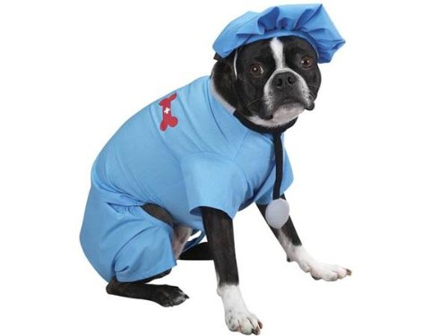 Casual Canine ER Doctor Scrubs Halloween Dog Costume with Matching Cap & Stethoscope X-Small (Doctor Dog Costume)