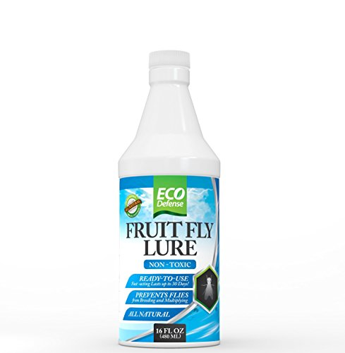 Eco Defense Fruit Fly Trap – Natural Non Toxic Fruit Fly Lure for Kitchen, Resturants, and More (16 oz) by Eco Defense