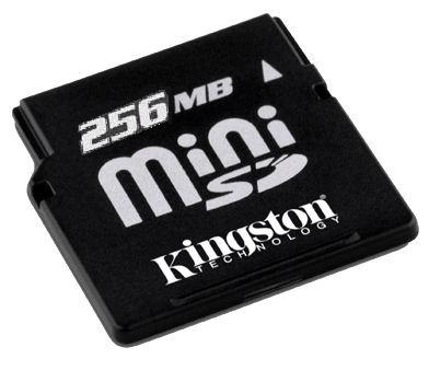 Kingston flash memory card - 256 MB - miniSD ( SDM/256 )