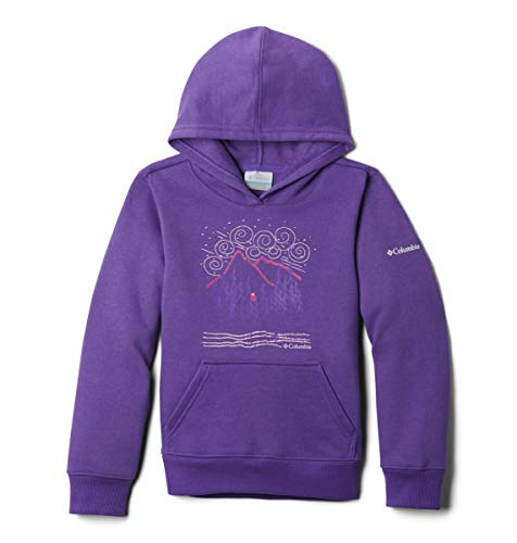 Columbia Kids' Big Hart Mountain Hoodie, Grape Gum, X-Small