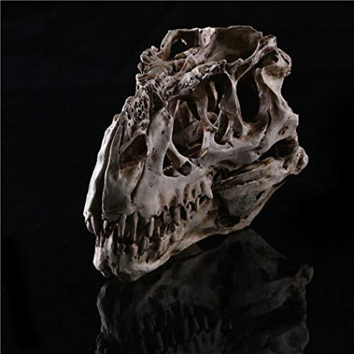 XOBULLO Tyrannosaurus Rex Dinosaur Resin Fossil Skull StatueSculptureModel Collectibles Decoration -