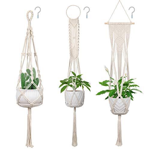 Bestselling Hanging Planters