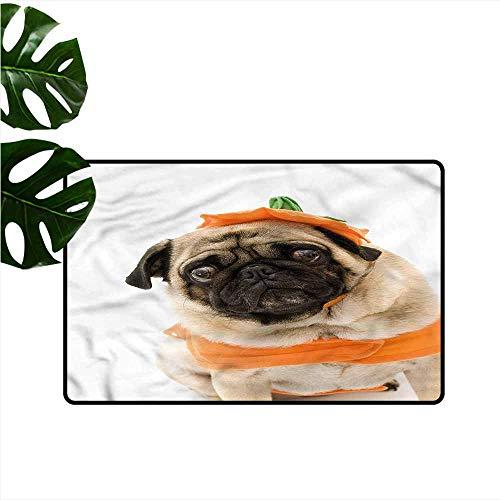Bedroom Doormat Pumpkin Pug Costume Trick Treat with