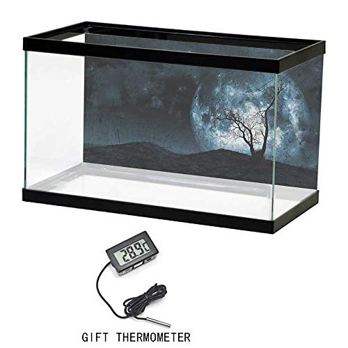 Fish Tank Background, Fantasy, Night Moon Sky with Tree Silhouette Gothic Halloween Colors Scary Artsy Background, Slate Blue, 35