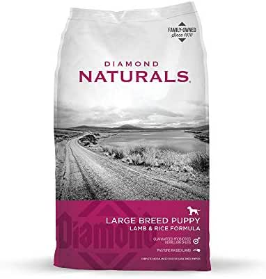 Dog Food: Diamond Naturals Puppy Large Breed