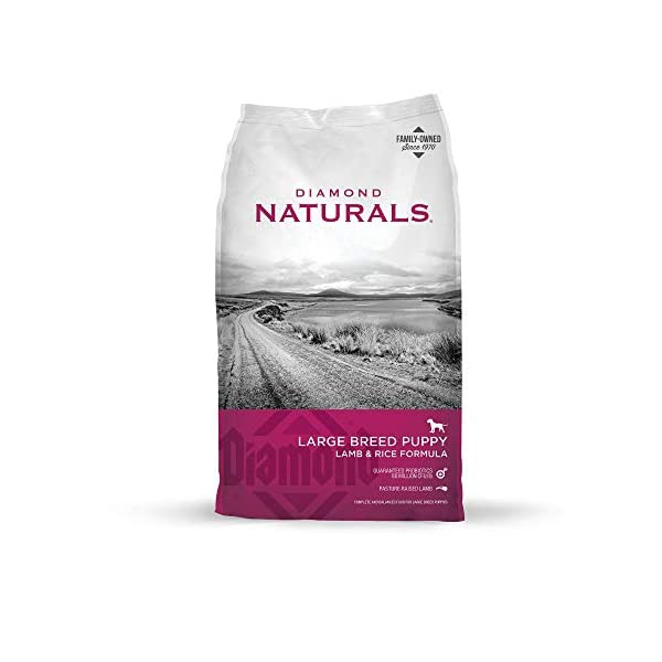 Diamond Naturals Large Breed Puppy Real Lamb Recipe Premium Dry Dog Food, 40 lb