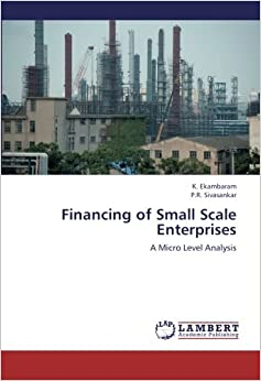 Financing of Small Scale Enterprises: A Micro Level Analysis