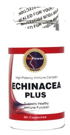 Golden Echinacea (Echinacea Plus # 450mg, 180 Capsules - Immune System Support - Echinacea Golden Seal Cayenne Ginger - BioPower Nutrition (2 Bottles))