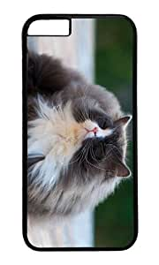 MOKSHOP Adorable cat enjoy sun Hard Case Protective Shell Cell Phone Cover For Apple Iphone 6 Plus (5.5 Inch) - PC Black