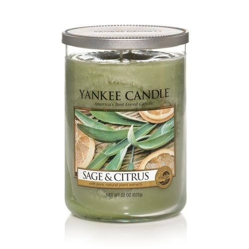 2 Wick Glass Candle - Yankee Candle Large 2-Wick Tumbler Candle, Sage & Citrus