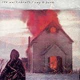 Rag & Bone Plus Cat by Walkabouts (1995-04-16)