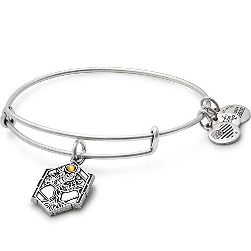 Alex Ani Womens Path Symbols