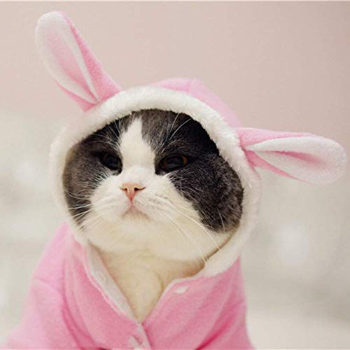 WORDERFUL Pet Dog Rabbit Costume Puppy Hoodies Winter Coat Bunny Autumn Winter Halloween for Small Dog and Cat (M) ()