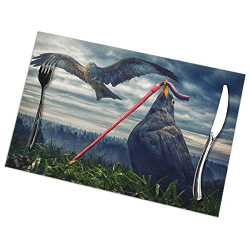 Efbj Washable Placemats for Kitchen Table Dining Room Decor, Bird Eat Earthworm Print Table Mats Rectangle, 6 PCS -