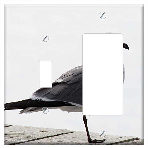 1-Toggle 1-Rocker/GFCI Combination Wall Plate Cover - Seagull Bird White Gull Sea Pier Wildlife Wil (Bird Pier Plates One)