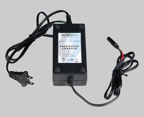 フルスペクトラム電源cv1h Paceマーカー充電器 B01BW4W0DM