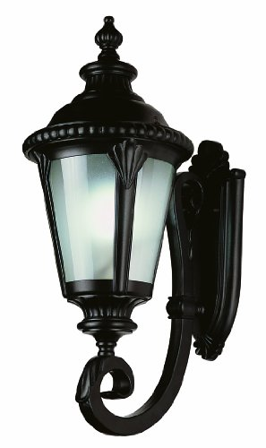 Trans Globe Lighting PL-5041 BK Energy Efficient Outdoor Lighting with Fluorescent Bulb by Bel Air Lighting (Image #1)