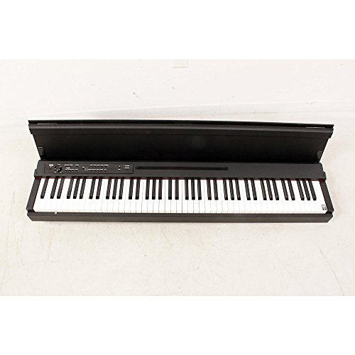 Korg LP-380 Lifestyle Digital Piano Level 2 Black 888365636030 by Korg