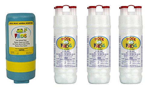 Pool Frog Mineral Purifier Replacement In Ground Value Pack by Pool Frog
