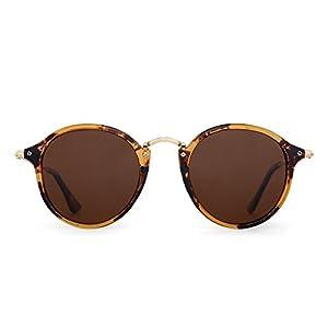 Retro Polarized Round Sunglasses Small Mirror Tinted Circle Lens Men Women (Tortoise / Polarized Brown)