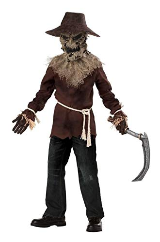 Wicked Scarecrow Child Costume NEW Boys Halloween Outfit -