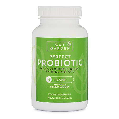Gut Garden Perfect Probiotic – 10 Cultured Strains, 13 Billion CFU Per Serving Delayed Release Capsules For Sale
