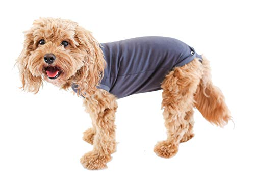 Belly Guard - Dog Recovery Onesie - Cone Alternative - After Surgery Wear (Small, Grey)