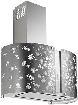Falmec-Campana de Isla LED Moonlight cristal serigrafiado cm y 65 potencia 800m3/h: Amazon.es: Hogar