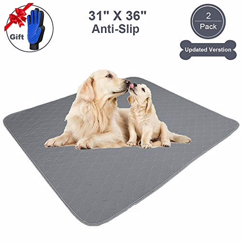 JdPet Washable Dog Pee Pads+Free Grooming Gloves – Reusable Whelping Pads,Waterproof Dog Mat Non-Slip Puppy Potty…