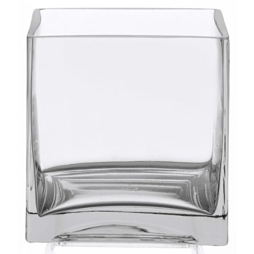 WGV Clear Square Cube Glass Vase/Votive Candle Holder, -