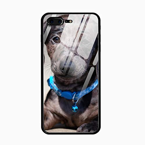 (Lazy Dachshund Printed Phone 7 Plus/8 Plus Cover Full Body Protect Tempered Glass Compatible for iPhone 7 Plus/8 Plus Case 5.5