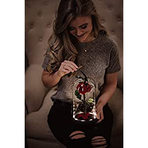 Beauty and the Beast Rose in Glass Dome, Enchanted Real Preserved Red Rose in Large Glass Jar with LED twinkle lights 68