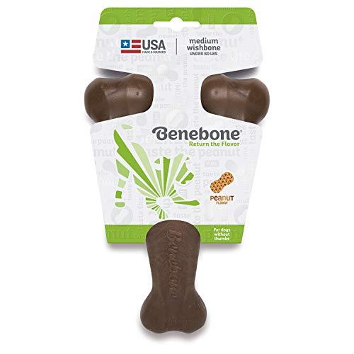 Benebone Peanut Butter Flavored Wishbone Chew Toy