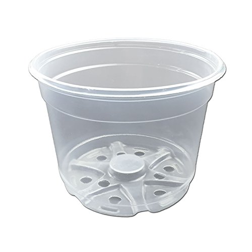 Crystal Clear Orchid Pots Pack